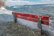 Die schönen Seiten der Kälte: Eiszapfen am Ufer des Sempachersees in Nottwil. (Bild: Pius Amrein (26. Februar 2018))