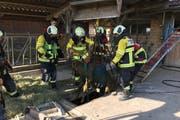 Die Einsatzkräfte retten das Kalb unversehrt aus der Grube. (Bild: Feuerwehr Cham)