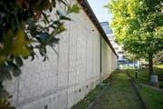 Das flächendeckende Wabenmuster auf der Wand neben der Jugendherberge fristet an seinem schattigen Ort heute eher ein Schattendasein. Zeit, wieder einmal bewusst hinzuschauen. (Bild Maria Schmid)