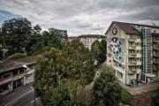 Sie ist Teil des Kulturprojekts Himmelrich: Die «Queen-Kong» ziert eine der Fassaden. (Bild Pius Amrein)