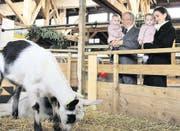 Auch Paul Twerenbold, Verwaltungsratspräsident der Zuger Messe, zieht es in die Tierhalle. Auf dem Arm hat er seine Enkelin Valentina. Begleitet wird er auf dem Rundgang von seiner Tochter Liliane Twerenbold. Sie hat Julia auf dem Arm. (Bild: Alina Rütti)