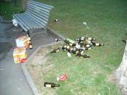 Am Quai in der Stadt Zug liegen Bierflaschen herum. (Archivbild ZZ)
