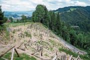 Am Hang über der Hergiswaldstrasse sind Lawinen- und Steinschlagschutzverbauungen erstellt worden. (Bild: Roger Grütter (Kriens, 13. Juli 2017))