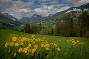 Die Biosphäre Entlebuch beispielsweise trägt zur Biodiversität in der Schweiz bei. Im Bild ist der Blick in Richtung Flühli im Gebiet Salwideli. (Archivbild / Pius Amrein / Neue LZ)