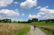 Eine ausgedehnte Velotour vertreibt Kummer und Sorgen. Hier abgebildet ist das Suhrental, das auf der Grenze zwischen den Kantonen Luzern und Aargau liegt. (Bild: Leserbild: Heinz Schürmann)