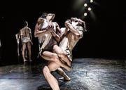 Die Kibbutz Contemporary Dance Company aus Israel ist am 19. Januar bei der TMGZ zu Gast. (Bild: PD)