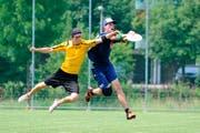 Szene aus einem Frisbee-Spiel. (Archivbild Neue ZZ)