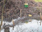 Dieser Elektrozaun am Förndlibach soll Biber davon abhalten, den Damm höher zu bauen. (Bild: Christine Schneider (Root, 12. Dezember 2017))