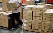 Herbalife verkauft Produkte zur Gewichtskontrolle, Nahrungsergänzungs- und Körperpflegeartikel. (Bild: Patrick T. Fallon/Getty (Carson, 4. März 2014))