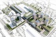 Der Bebauungsplan erstreckt sich von der Baarerstrasse über die Industriestrasse bis zur Oberallmendstrasse sowie von der Göblistrasse über die Ahonstrasse bis zur Grienbachstrasse.