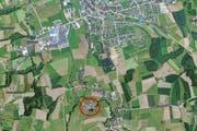 In der Sägerei zwischen Hochdorf und Urswil brennt es. (Bild: Screenshot Christian Volken / luzernerzeitung.ch)
