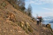 Bauingenieur Alois Käslin (links) und der Weggiser Gemeindeammann Baptist Lottenbach begutachten den Baufortschritt im Gebiet Laugneri in Weggis. (Bild Philipp Schmidli)