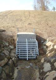 Oberhalb des Rückhaltebeckens wird mit einem Feinrechen der Wasserdurchlass geschützt. (Bild: PD)