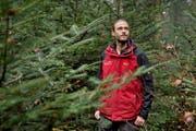 Forstingenieur Michiel Fehr im Luzerner Gütschwald: «Ich habe Respekt vor den Bäumen, bin ihnen gerne nahe und schaue in die Kronen hinauf – ich kann aber auch gut mit der Motorsäge umgehen.» (Bild: Pius Amrein / Neue LZ)