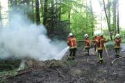 Die Feuerwehr löscht den Mottbrand in Galgenen. (Bild Kantonspolizei Schwyz)