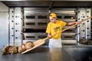 Hat seinen Ausbildungsplatz bereits gefunden: Joshuan Brenner (16) absolviert das erste Lehrjahr bei der Bäckerei Brunner in Dierikon.