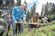Dario Cologna und Lizan Kuster halfen im Gurschenwald tatkräftig mit. (Bild: Urs Hanhart/UZ, Andermatt, 30. Juni 2017)