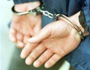 Dank Hinweisen aus der Bevölkerung konnte der Einbrecher unmittelbar nach der Tat festgenommen werden. (Symbolbild Neue ZZ)