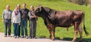 Siegerpreis: Braunvieh-Stier «Mars» von Ruedi und Remo Stettler aus Meierskappel. (Bild: PD)