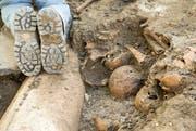 Bei den Ausgrabungen kamen Schädel und Knochen zum Vorschein. (Bild: Alexandra Wey/Keystone (Luzern, 14. August 2017))