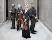 Das Hagen-Quartett aus Österreich zeigte auch in Luzern, dass es zur absoluten Spitzenklasse seiner Sparte gehört. (Bild: Harald Hoffmann/PD)