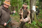 Das Luzerner Jagdgesetz wird nach über 25 Jahren revidiert. (Bild: Dominik Wunderli (Römerswil, 9. Oktober 2015))