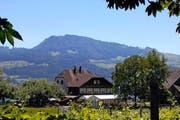 Das Gasthaus Zu den zwei Raben im Vordergrund des Etzels. (Bild: Elvira Jäger/Neue SZ)