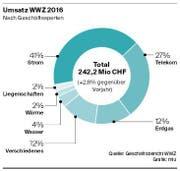 Quelle: Geschäftsbericht WWZ (Bild: Grafik: mlu)