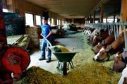 Agriviva vermittelt Arbeitseinsätze auf Bauernhöfen. (Bild: Agriviva.ch)