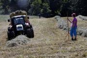 Im Kanton Zug gibt es aktuell noch 569 Bauernbetriebe. (Symbolbild ZZ)