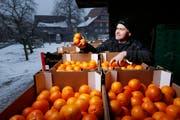 Cornel Andermatt ist mit den Orangen zufrieden. Am Sonntag und Montag werden sie an die Fasnächtler verteilt. (Bild Stefan Kaiser)