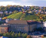 Um Stuttgarts Weinberge zu sehen, braucht man nicht weit zu gehen – sie liegen praktisch vor der Haustür.
