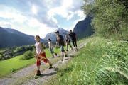 Gottardo Nord - Amsteg-Erstfeld - Sicht auf den Bristen / Angel Sanchez - IG BWW