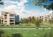 Viel Platz zwischen den Gebäuden: So soll die Siedlung auf dem Grüenmatt-Areal in Emmen dereinst aussehen. (Bild: Visualisierung: PD)