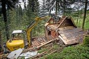 Während Jahren vermietete die Gemeinde Kriens diese illegal gebaute Hütte im Gebiet Rigiblick im Krienser Hochwald. Gestern wurde sie innert 30 Minuten abgerissen. (Bilder Pius Amrein)