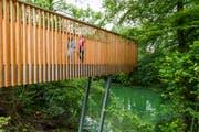 Der Lorzenweg führt über einen neuen Holzsteg. (Bild: Andreas Busslinger / PD)