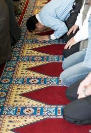 Laut der Uni Luzern könnte der Islam zur Landeskirche werden. Im Bild: Muslime beim Gebet im türkisch-islamischen Zentrum in Ostermundigen. (Bild: Keystone / Peter Schneider)
