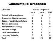 Ursachen der Gülleunfälle im Kanton Luzern von 2013 bis 2015. (Bild: Keystone)