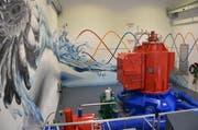 Blick auf die Turbine mit dem Generator in der Zentrale Müliacher in Steinen. (Bild: PD)