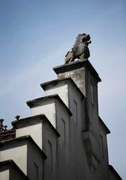 Der Sandsteinlöwe, der bis 1868 den Brunnen zierte, wurde aufs Zollhaus versetzt. (Bild: Stefan KaiserPHOTO)
