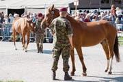 Versteigerung der Pferde des mutmasslichen Tierquälers aus Hefenhofen TG. (Bild: Anthony Anex/Keystone (Schönbühl, 17. August 2017))