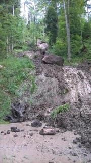 Ein von Oberflächenwasser ausgelöster Rutsch erstreckt sich bis auf Waldstrasse. (Bild: PD)