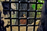 Die verurteilten Ordensleute vegetierten oft über Monate in einem unterirdischen Verliess vor sich hin. Tägliche Körperstrafen gehörten dazu. (Bild Andreas Faessler)