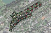 Blick auf die 20 Häuser, die ersetzt werden. (Bild: Visualisierung: PD)