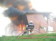 Stall in Vorderthal steht in Flammen. (Bild: Kantonspolizei Schwyz)