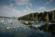 Der Segelbootshafen Tribschenhorn am 30. September: Für den Umbau mussten die meisten Boote ausgewassert werden. (Bild Pius Amrein)