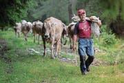 Die neue Beratungsstelle soll Landwirte auch bei rechtlichen Fragen unterstützen. (Bild: Pablo Gianinazzi/Keystone (Quinto TI, 5. Juli 2014))