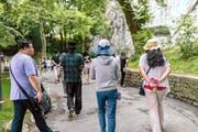 Sprechen nur «hinter dem Rücken» über ihre wahren Eindrücke: chinesische Touristen beim Löwendenkmal in Luzern. (Bild Roger Grütter)
