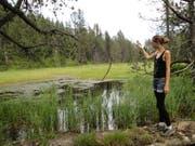 Janine Heini wirft ein Stück Holz in den Pilatussee. Im Mittelalter wäre sie dafür noch verhaftet worden, weil die Luzerner glaubten, dass die Totenruhe des Pontius Pilatus dadurch gestört würde. (Bild: PD)