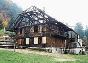 Der Besitzer zündete das Haus am 8. Oktober 2015 in einer Kurzschlussreaktion an. (Bild: PD)